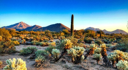 pinnacle_peak_park_scottsdale-420x230 - scottsdale